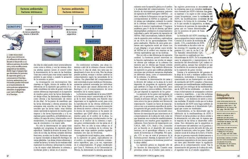 Etología - Sociobiología - Apuntes, conceptos - - Biologia - Foros ...